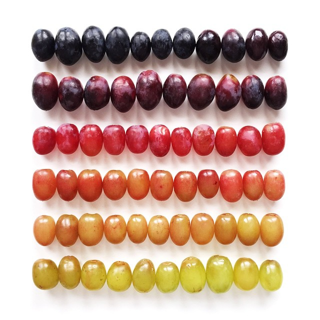 Amazing Food Gradients by Brittany Wright