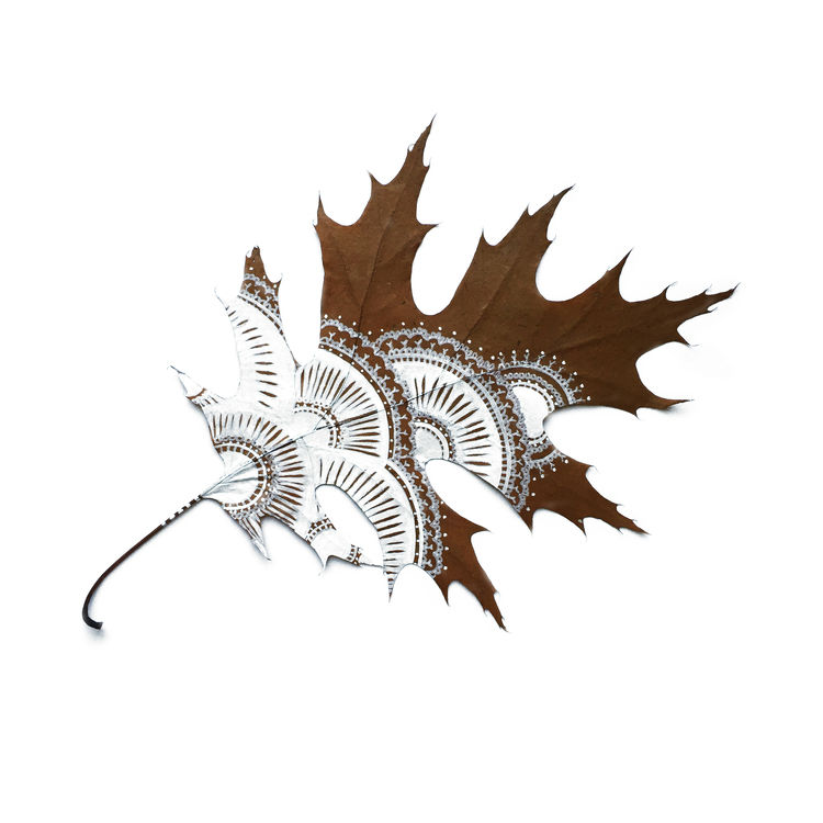 Artist Pays a Wonderful Tribute to Nature by Carving Stunning Things Out of Fallen Leaves