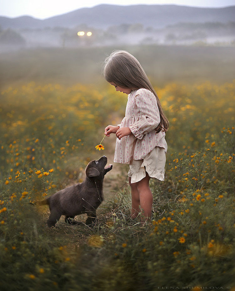 Elena's Photos Show the Innocent Love Between Kids and Animals ...