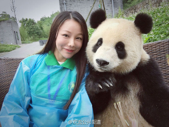 This Beautiful Panda Knows How to Pose for a Perfect Selfie!