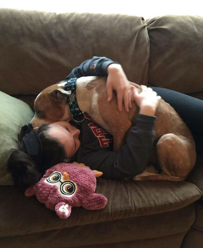 Adopted Pit Bull Cant Stop Hugging His Savior
