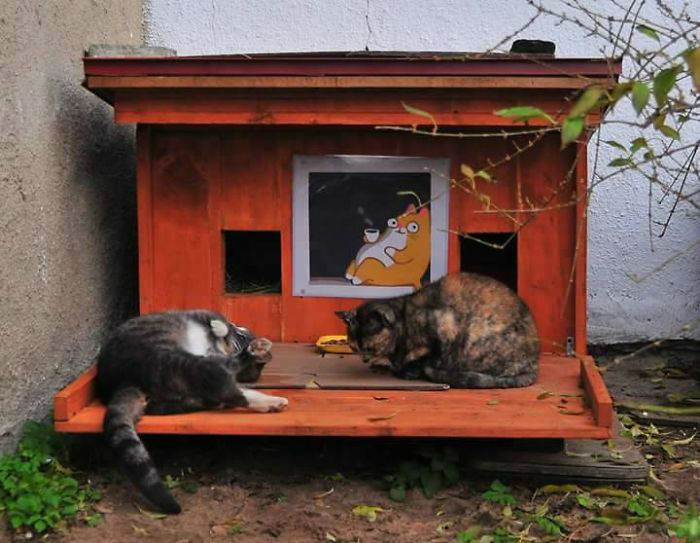 Tiny Houses for Homeless Cats in Riga to Survive Winter