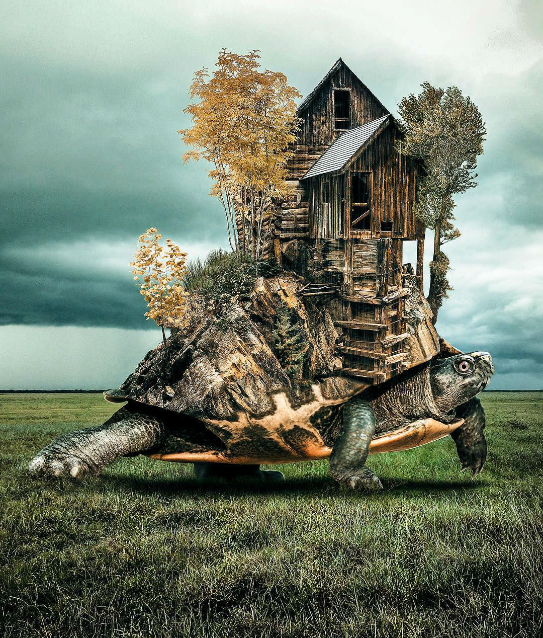 Surreal Photos That Will Leave You Speechless