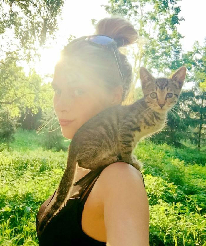 Girl From Latvia Rescued More Than 350 Homeless Cats in Last 2 Years