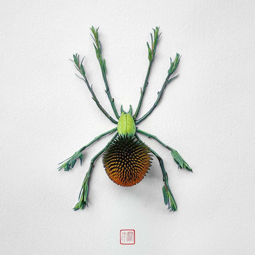 Beautiful Insects Out of Flowers – Search for Fulfilling Art Forms