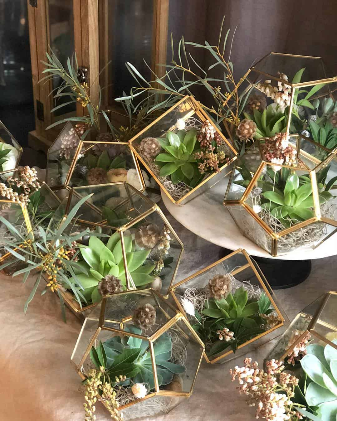 24 Outstanding Ideas for Decorating Your House with Succulents