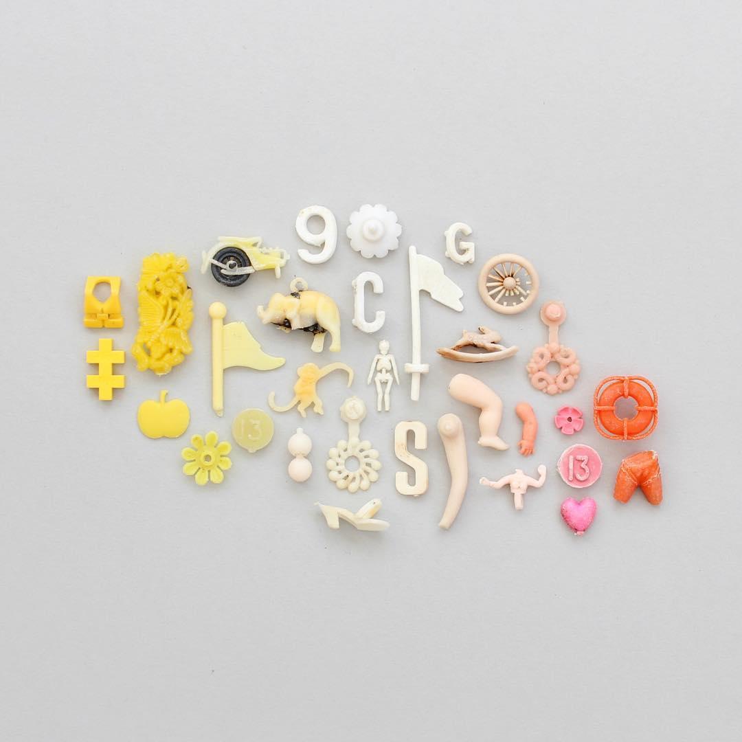 Artist Creates Colorful Arrangements With Beach Finds