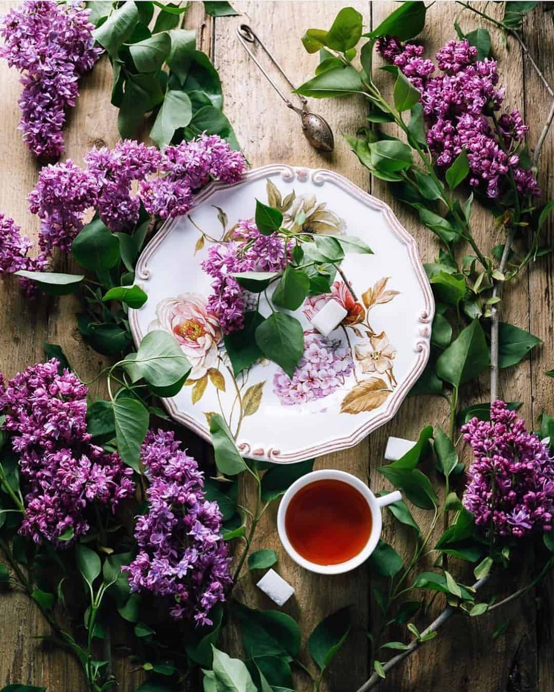 Delightful Food Compositions by Olena Hassel