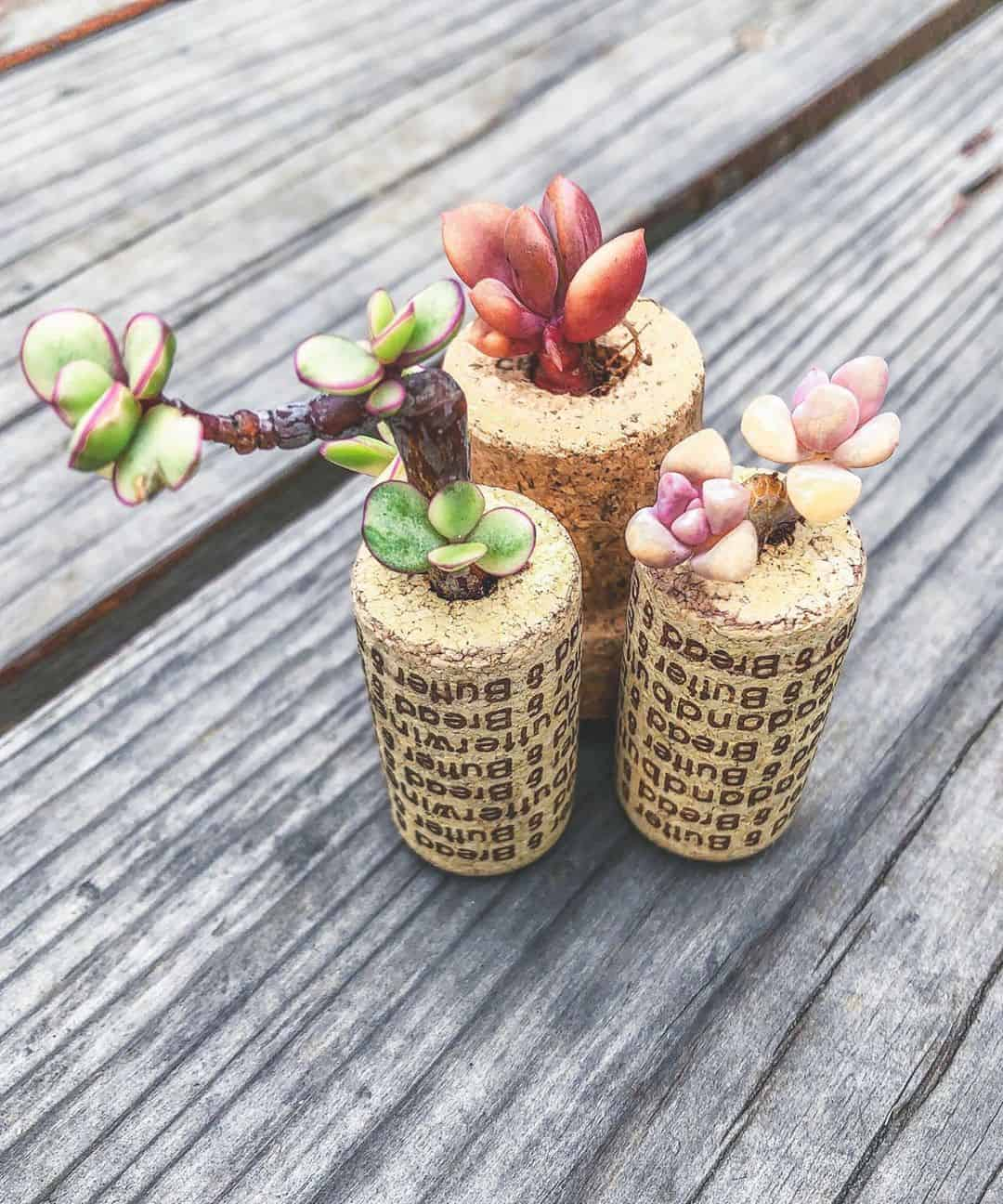 24 Decorative and Useful Wine Cork Crafts Ideas