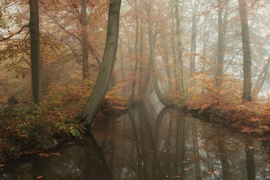 Countryside Photography of Twente, the Netherlands by Vicent Croce