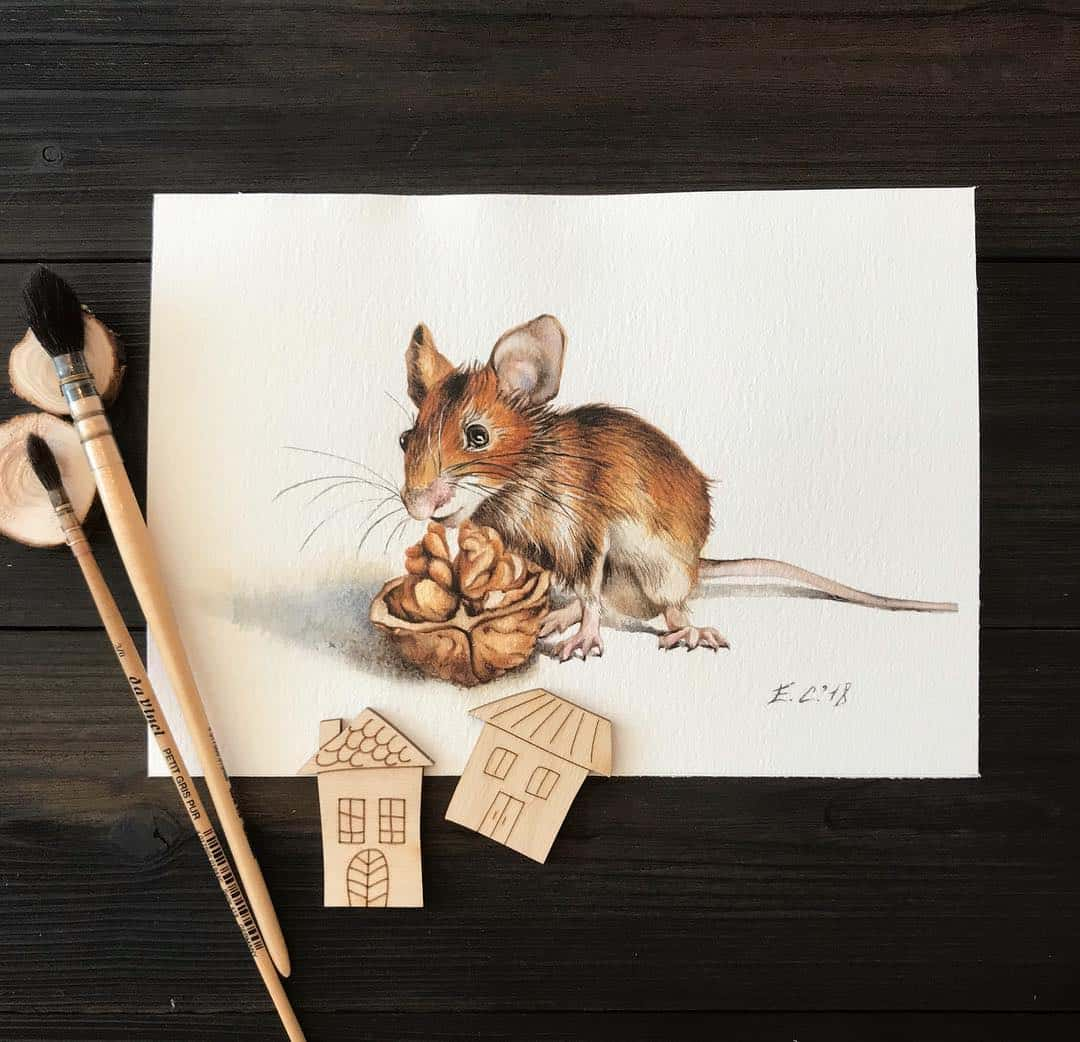 Playful Pet Illustrations For Children by Selina Elena