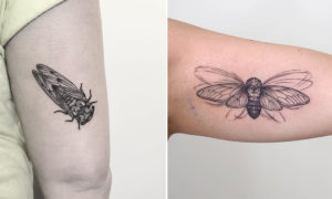 22 Cryptic Cicada Tattoo Designs and Where to Ink Them