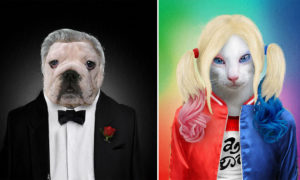 Man Paints Shelter Animals as Superstars and Superheroes to Help Them Find Home
