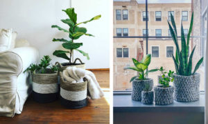 24 Stylish Pot Cover Ideas to Pretty Up Your Plants