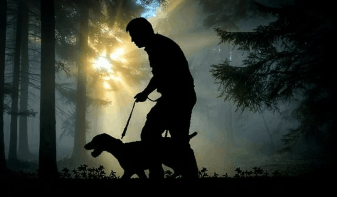 6 Pro Tips for Teaching Your Dog to Walk on a Leash